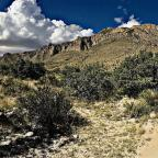 Guadalupe Mountains National Park Excursion